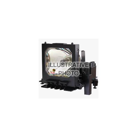 lampe pour projecteur de bulbe n12/P12