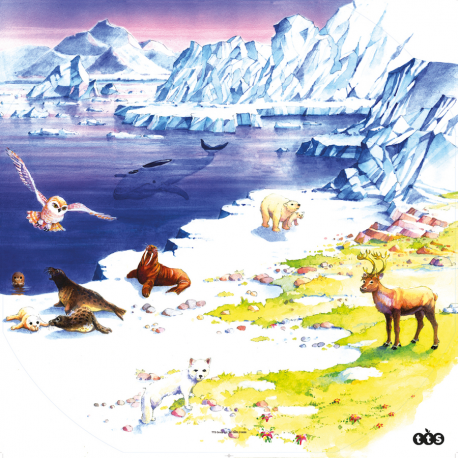 Tapis arctique