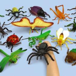 Collection d'insectes géants