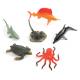 Pot de créatures marines